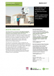 Child Protection Intervention Evidence Brief Cover
