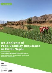 food security resilience