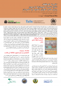 standing-wealth-briefing-arabic-thumbnail