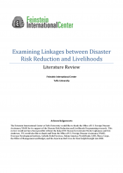 disaster-risk-reduction-lit-review-thumbnail