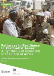 pathways to resilience