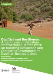 conflict and resilience synthesis