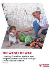 Syrian livelihoods through conflict